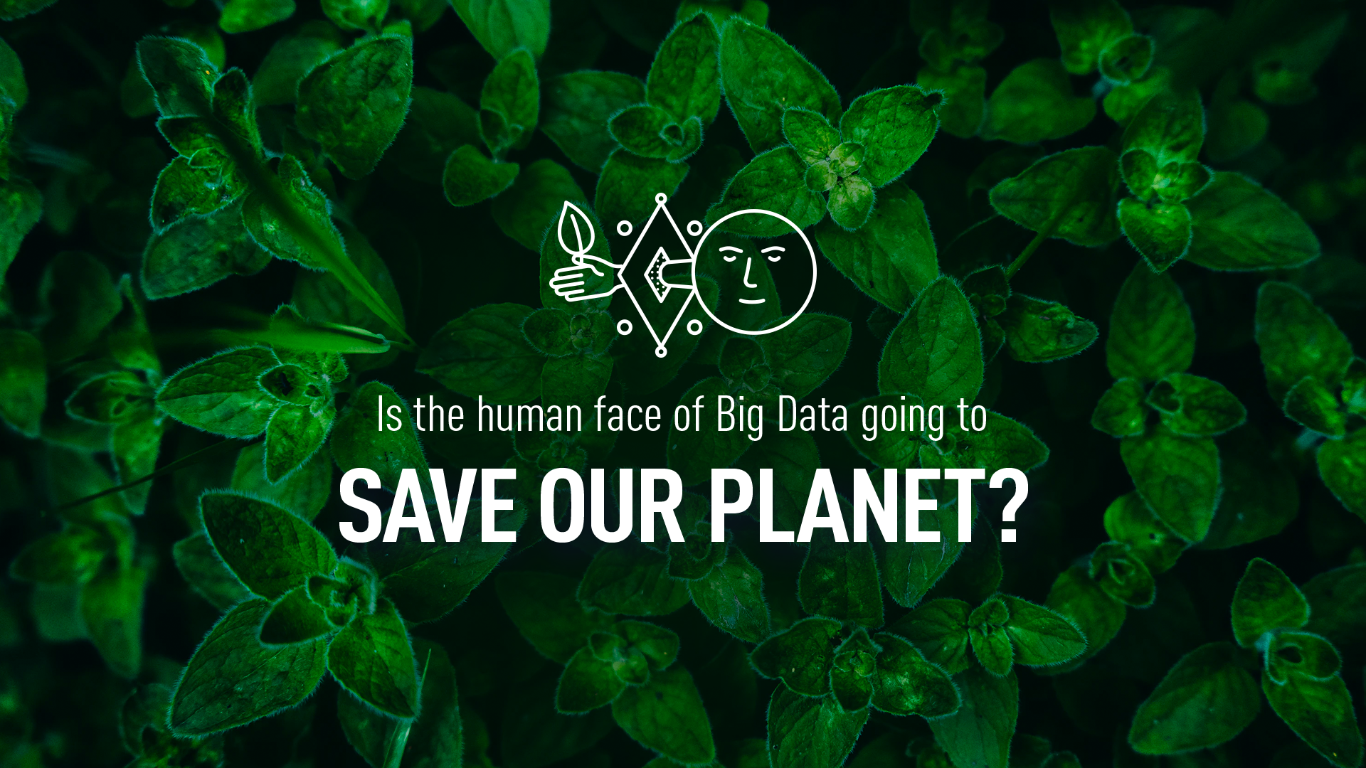 Is the human face of Big Data going to save our planet?